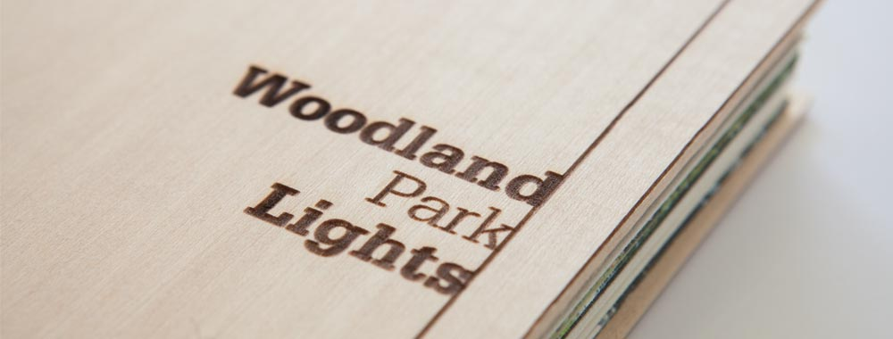Woodland Park Lights Proposal